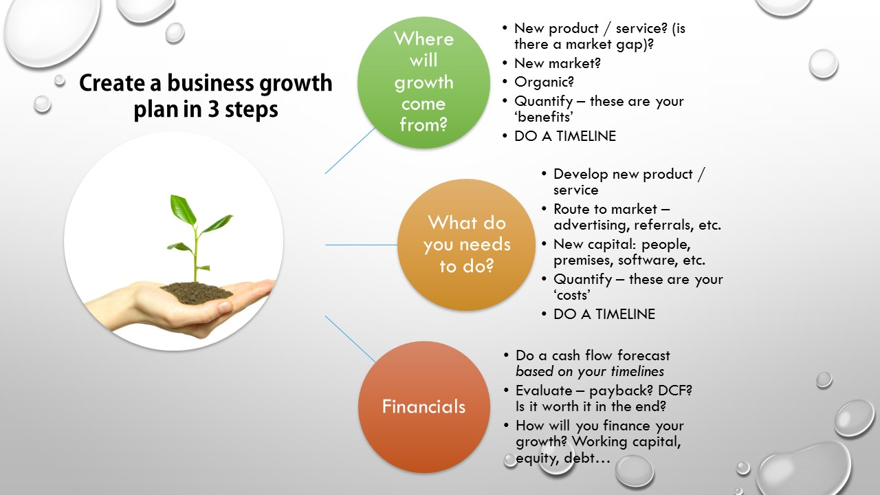 prepare a business plan for growth